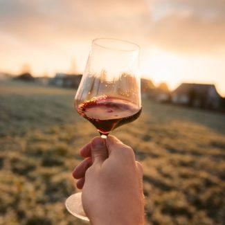 agricole viticole